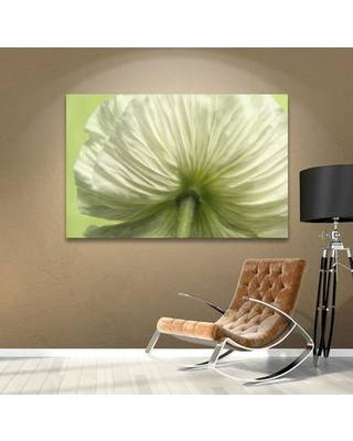 """House of Hampton Frilly Petals Photographic Print on Wrapped Canvas HOHN6762 Size: 16"""" H x 24"""" W x 2"""" D"""