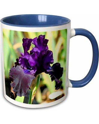 Savings On Winston Porter Gilcrease Iris Coffee Mug Ceramic In Purple Green Size 3 H X 3 W X 4 D Wayfair 50c2562f8fd542f58e5549951ad93b1e