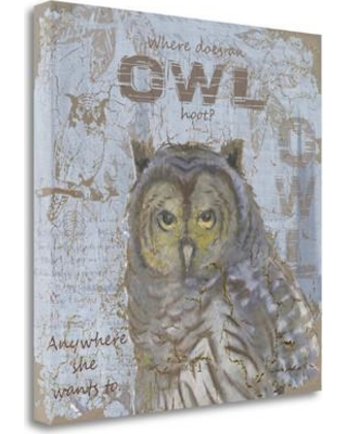 Tangletown Fine Art 'Where Does an Owl Hoot' by Anita Phillips Graphic Art on Wrapped Canvas SBAP1969-2121c