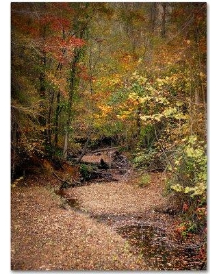 """Trademark Fine Art 'Creek Bed in Autumn' Photographic Print on Wrapped Canvas ALI14141-C Size: 19"""" H x 14"""" W"""