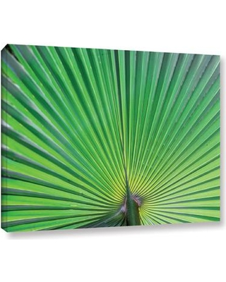 "Bay Isle Home 'Green Leaf' Photographic Print on Wrapped Canvas BAYI8528 Size: 24"" H x 32"" W x 2"" D"