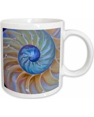 East Urban Home Close-up of Chambered Nautilus Cut in Half Coffee Mug W000105792 Color: White