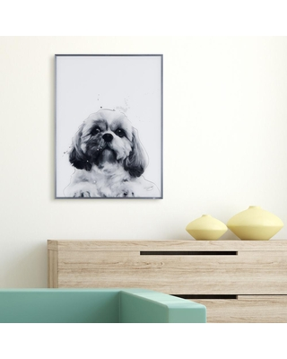 Empire Art Direct Shih-Tzu Black and White Dog Paintings on Reverse Printed Glass Framed Wall Art