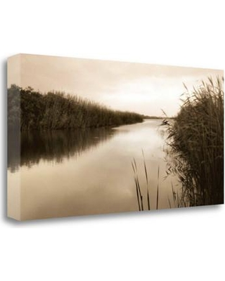 """Tangletown Fine Art 'River Reeds' Photographic Print on Canvas ICT313D-2814c Size: 16"""" H x 32"""" W"""