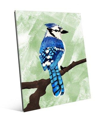 "Click Wall Art 'Painted Blue Jay on Green' Print of Painting on Acrylic BRD0000052ACR Size: 14"" H x 11"" W x 1"" D"