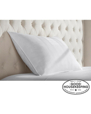 2020 Sales On Home Decorators Collection Down Surround King Pillow White