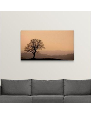 "Ebern Designs 'Sentinel at Dusk' Photographic Print on Canvas X112239711 Size: 27"" H x 48"" W x 1.5"" D"