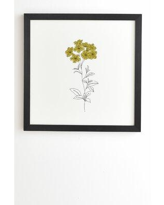 East Urban Home 'The Color Study Botanical Illustration Iona' Framed Print X112507081