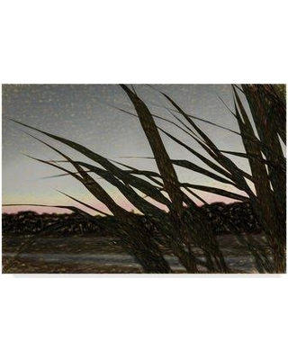 """Trademark Art 'Giant Reeds' Photographic Print on Wrapped Canvas ALI24743-CGG Size: 22"""" H x 32"""" W"""