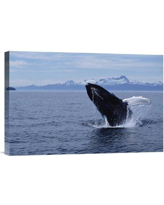 "East Urban Home 'Humpback Whale Breaching Southeast Alaska' Photographic Print EAAC8397 Size: 12"" H x 18"" W Format: Wrapped Canvas"