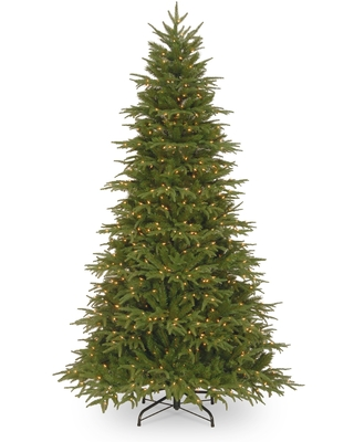 6.5 ft. Northern Frasier Fir Tree with Clear Lights