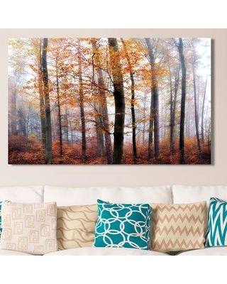 """Loon Peak 'Lost in the Forest' Photographic Print on Wrapped Canvas LNPK9049 Size: 28"""" H x 48"""" W"""