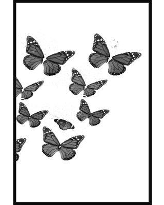 August Grove 'Black and White Butterflies II' Framed Graphic Art Print on Canvas BF009653