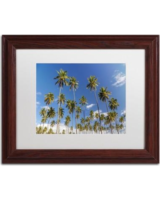 "Trademark Art ""Coconut Grove"" by Pierre Leclerc Framed Photographic Print PL0248-W1114MF / PL0248-W1620MF Size: 16"" H x 20"" W x 0.5"" D"