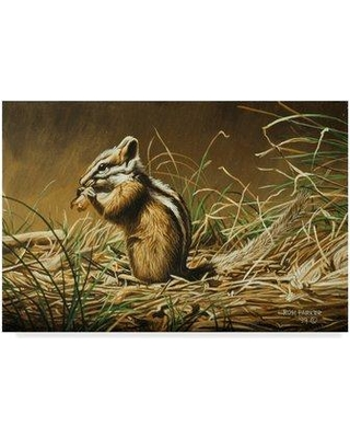 "Trademark Fine Art 'Chipmunk' Graphic Art Print on Wrapped Canvas ALI32269-CGG Size: 12"" H x 19"" W x 2"" D"
