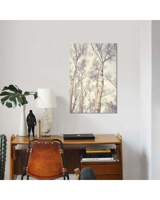 "East Urban Home 'Birch Trees' Graphic Art Print on Canvas EBHU7287 Size: 40"" H x 26"" W x 0.75"" D"