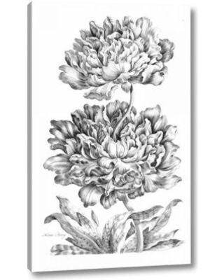 """Gracie Oaks 'Heroic Peony' by John Hill Giclee Art Print on Wrapped Canvas BF099788 Size: 16"""" H x 10"""" W x 1.5"""" D"""