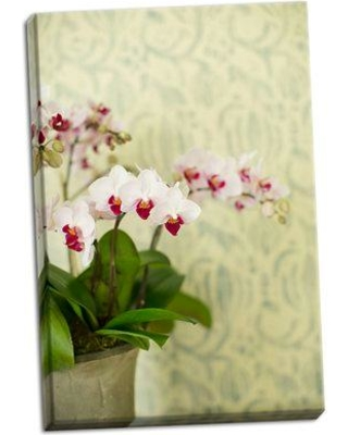 House of Hampton 'Orchid Vase' Photographic Print on Wrapped Canvas BI051581