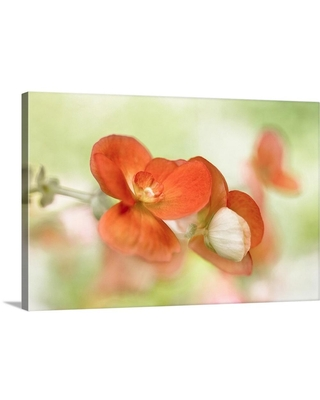 """GreatBigCanvas """"Summer Glow""""by Mandy Disher Canvas Wall Art, Multi-Color"""