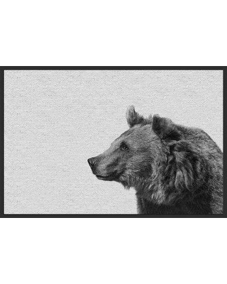 "Millwood Pines 'Side Furry Bear II' Framed Photographic Print on Canvas BF048620 Size: 40"" H x 60"" W x 1.5"" D"