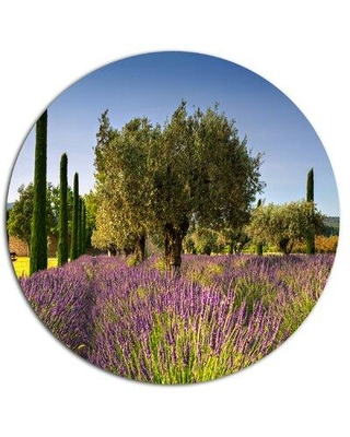 "Design Art 'Beautiful Lavender and Olive Trees' Photographic Print on Metal MT12362-C Size: 23"" H x 23"" W x 1"" D"