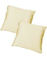 Winston Porter Wyndmoor Dot Embroidery Throw Pillow BF149106 Color: Ivory