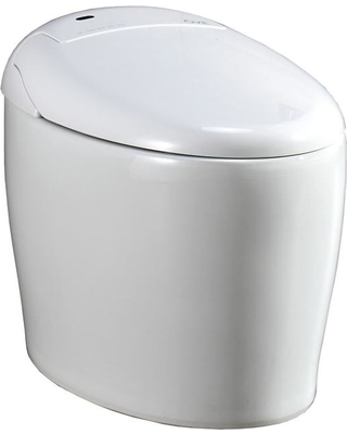 Fabulous Ove Decors Ove Decors Tuva Elongated Bidet Toilet In White From Home Depot Bhg Com Shop Pdpeps Interior Chair Design Pdpepsorg