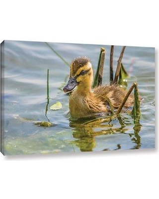 "Millwood Pines 'Mallard Duckling' Photographic Print on Canvas BI186491 Format: Wrapped Canvas Size: 8"" H x 12"" W x 1.5"" D"