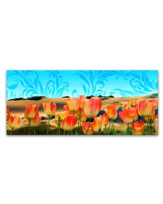 Painted Sky Panorama' Canvas Art by Tina Lavoie