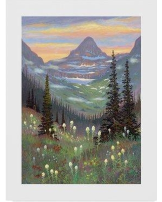 """Trademark Art 'Logan Pass' Oil Painting Print on Wrapped Canvas ALI37951-CGG Size: 32"""" H x 24"""" W x 2"""" D"""