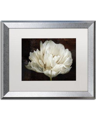 """Winston Porter 'Double White Tulip' Framed Photographic Print on Canvas WNPO1598 Size: 16"""" H x 20"""" W x 0.5"""" D Frame Color: Silver"""