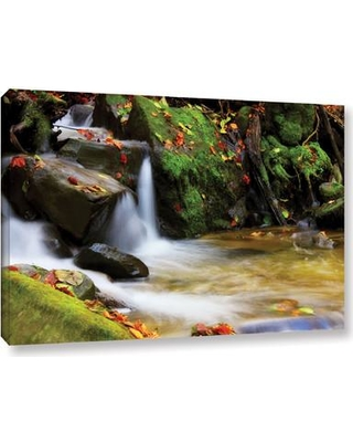 """ArtWall 'Timeless Forest' by Dragos Dumitrascu Photographic Print on Wrapped Canvas JJM7481 Size: 16"""" H x 24"""" W"""