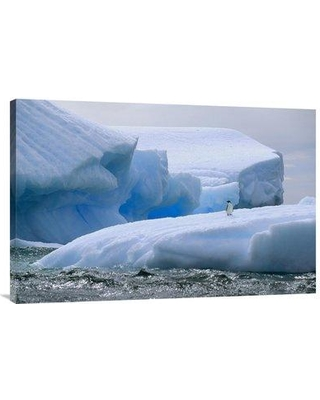 """East Urban Home 'Adelie Penguin on Iceberg Paulet Island Weddell Sea Antarctica' Photographic Print EAAC9360 Size: 24"""" H x 36"""" W Format: Wrapped Canvas"""