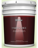 Shop Deals For Behr Pro 5 Gal 420c 2 Water Sprout Dead Flat Interior Paint