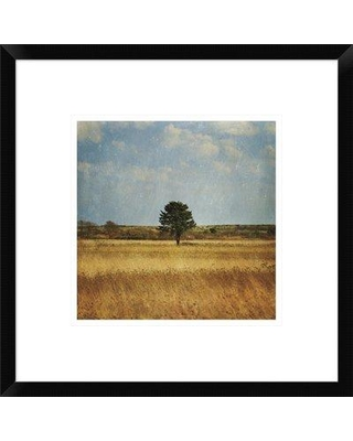 """East Urban Home 'The Lonely Tree' Photographic Print EUHE8710 Size: 10"""" H x 10"""" W Matte Color: Bright White Format: Collins Black Framed"""