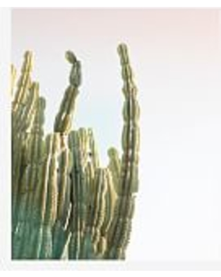 Fall Shopping Special: Bright Cactus Framed Print by Jane Wilder, 11 ...