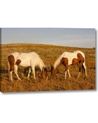 """Millwood Pines 'Sd Paint Horses Graze at a Horse Sanctuary' Photographic Print on Wrapped Canvas BF156150 Size: 10"""" H x 16"""" W x 1.5"""" D"""