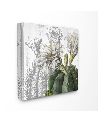 The Stupell Home Decor Cactus with White Blooming Flowers and Soft Grey Background Canvas Wall Art