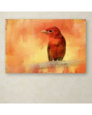 """Trademark Art 'Summer Red' Graphic Art Print on Wrapped Canvas ALI14921-C Size: 22"""" H x 32"""" W"""