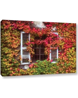 "Loon Peak Vines Window Photographic Print on Wrapped Canvas LNPK1532 Size: 16"" H x 24"" W x 2"" D"