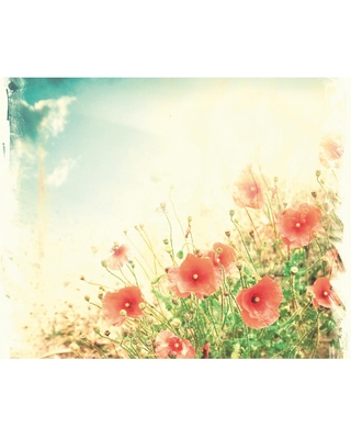 Check Out Deals On Ohpopsi Sepia Flowers Wall Mural