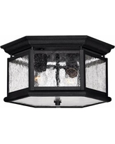 """Hinkley Raley Collection 13"""" Wide Ceiling Light"""
