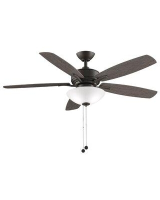 """Fanimation 52"""" Aire Deluxe 5 Blade Ceiling Fan with Remote Light Kit Included FP6285BGR"""