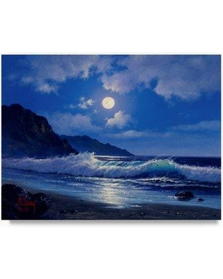 "Trademark Fine Art 'Coast Line 6' Oil Painting Print on Wrapped Canvas ALI20280-C Size: 24"" H x 32"" W"