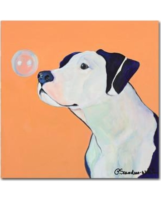 """Trademark Fine Art 'Fascination' by Pat Saunders-White Framed Painting Print on Wrapped Canvas PS107-C Size: 14"""" H x 14"""" W x 2"""" D"""