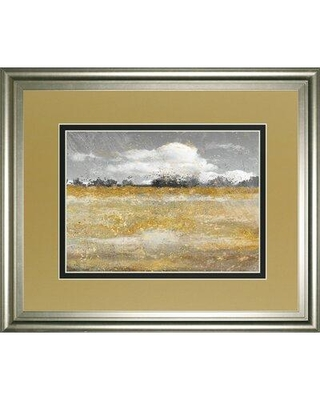 Classy Art Wholesalers 'Meadow Shimmer II' by Nan Framed Painting Print DM5569