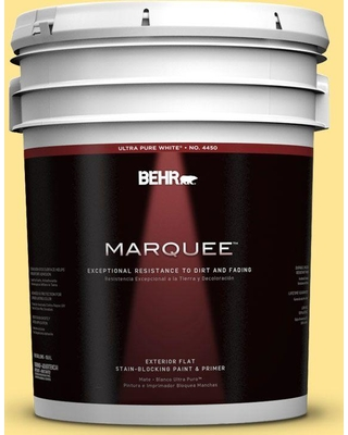 BEHR MARQUEE 5 gal. #390B-4 Chilled Lemonade Flat Exterior Paint and Primer in One