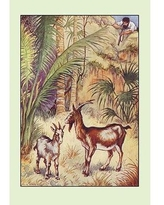 Shop Robinson Crusoe I Wanted No Sort Of Earthenware By Milo Winter Framed Painting Print Buyenlarge