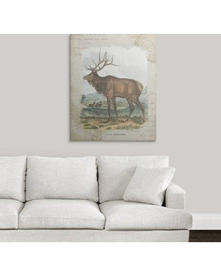 """Great Big Canvas 'Woodland Stag II' Graphic Art Print 2255661_1 Size: 36"""" H x 29"""" W x 1.5"""" D Format: Canvas"""