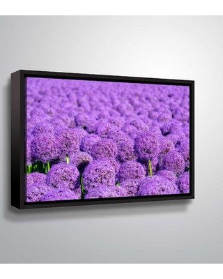 "Winston Porter 'Allium' Photographic Print on Canvas BF207788 Size: 32"" H x 48"" W x 2"" D Format: Floater Framed"